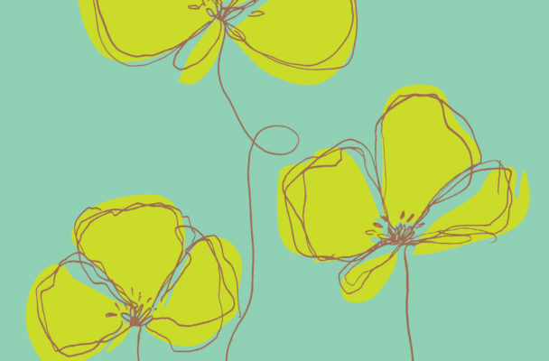 Flowers_Illustration_Scribbly
