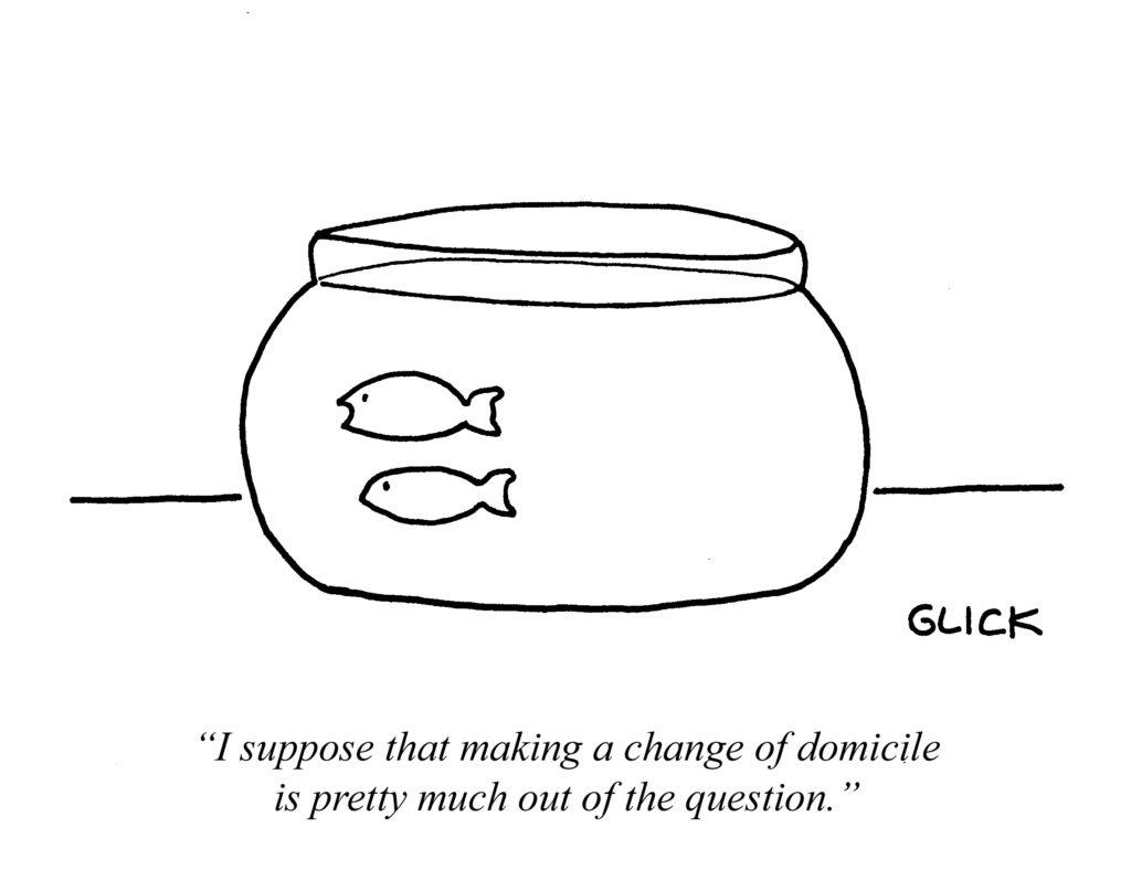 --- fishbowl - domicile (3)
